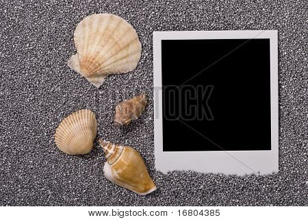 Photo frame with sea shells on silver sand background