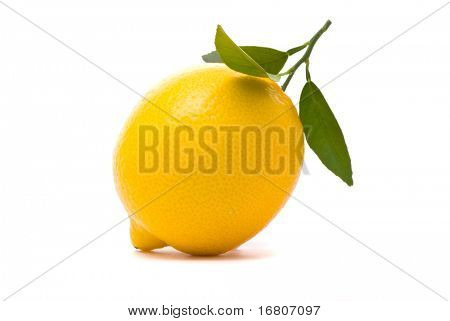 Lemon with fresh leaves. Macro shot. Studio white background.