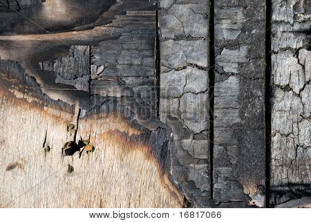 The scorched wooden background.