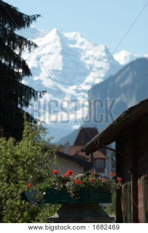 Montañas en la distancia