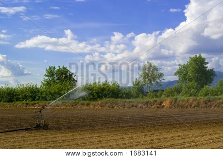 Field'S Irrigation, Italy