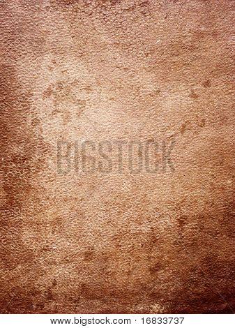 Textura de la piel (fondo gunge)