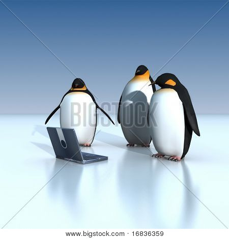laptop penguins