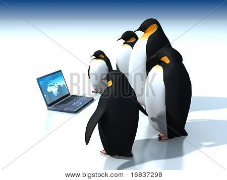 Penguins around  laptop