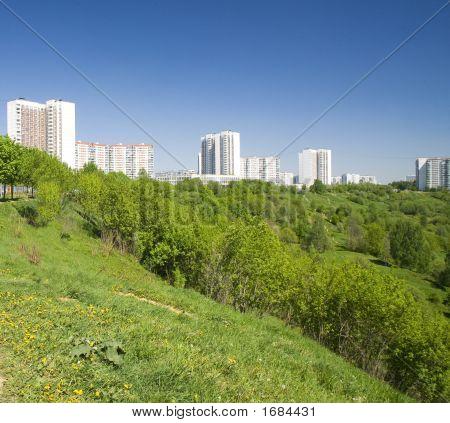 Summer Green Park