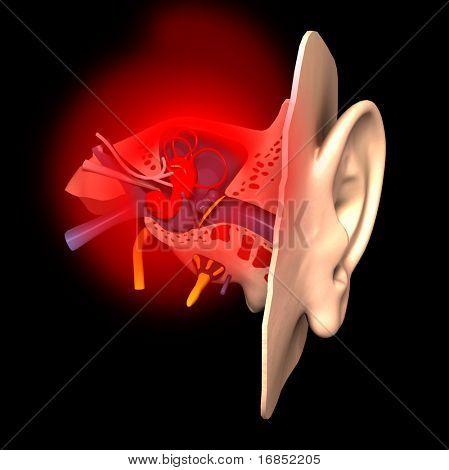Sick ear