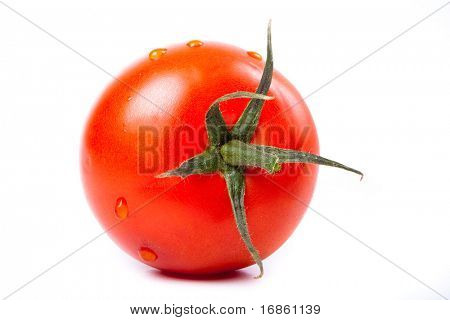 Ripe red fresh tomato with water drops