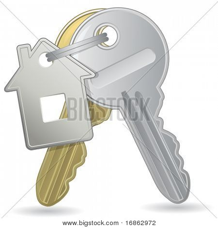 An illustration of a bunch of keys with a tag. Raster version of vector illustration #44180704
