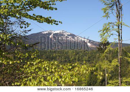 Bavarian Forest Mountains - highest peak Grosse Arber 1456 m - Germany Europe - hi res photo