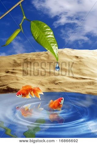 Two playing goldfish in tropical paradise