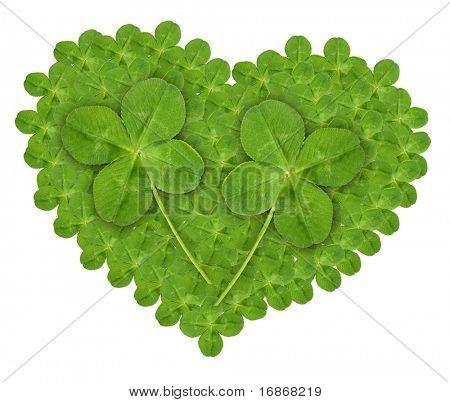 Verde hojas cuarto hogar