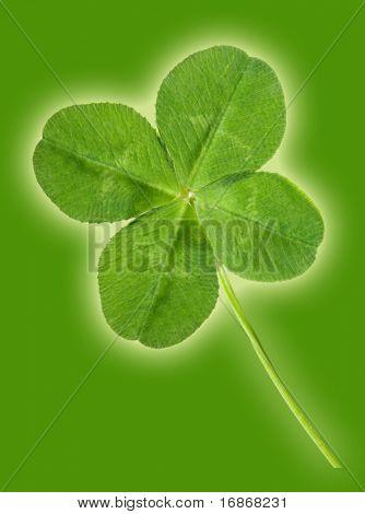 Green quarter-foil