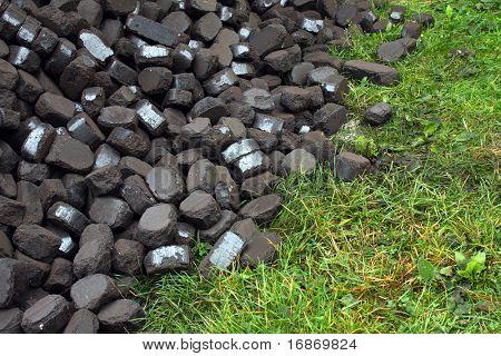 Lignito se incline sobre una hierba - metáfora ambiental