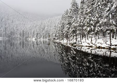 First snow in Devi�¾s Lake. Mystery place in National park Sumava - Czech Republic Europe