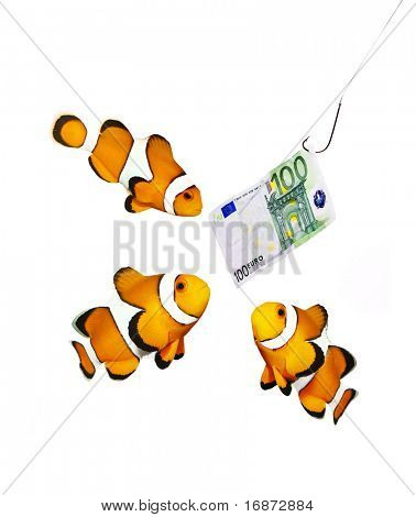 Money on the hook and three clown fish - business metaphor