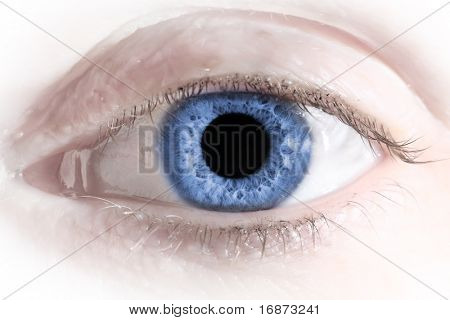 Blue Eye. Macro with shallow dof. One part  rgb color eye collection.