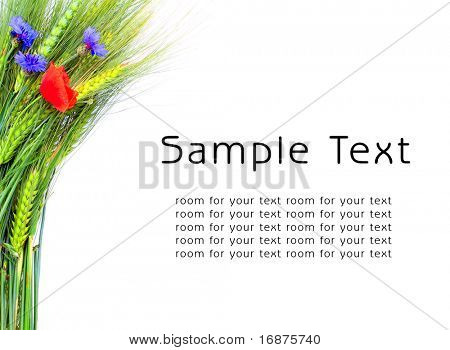 Grain and summer flowers with easy removable text. Great for your Day brochures and posters.