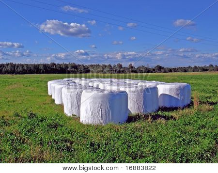 packed hay on field
