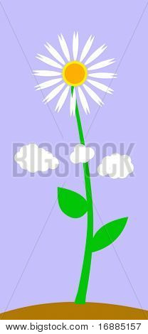 abstract drawing of the flower on background blue sky