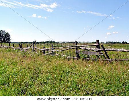 old fence on autumn field
