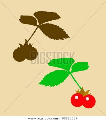 vector drawing of the berry bramble