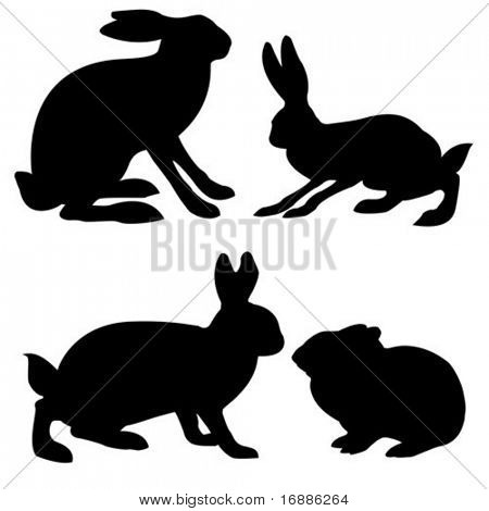 vector silhouettes hare and rabbit on white background