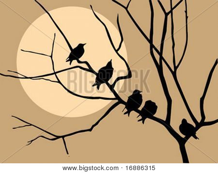 vector illustration migrating starling on branch tree
