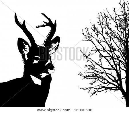 silueta de los ciervos en fondo blanco