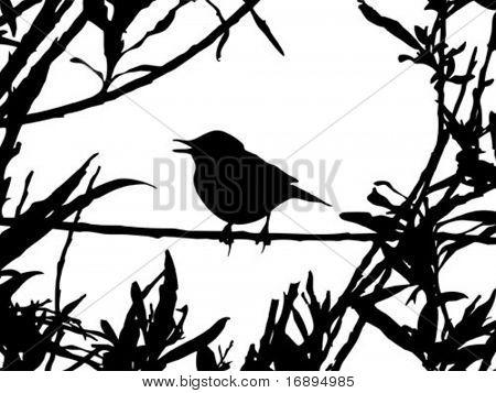 bird on branch amongst sheet . vector