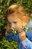 The Small Girl Noses A Flowers poster