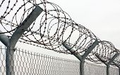 stock photo of barbed wire fence  - Fence with a barbed wire - JPG