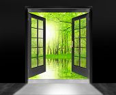 picture of open door  - Opened door to beautiful sunrise in imaginary rural landscape  - JPG