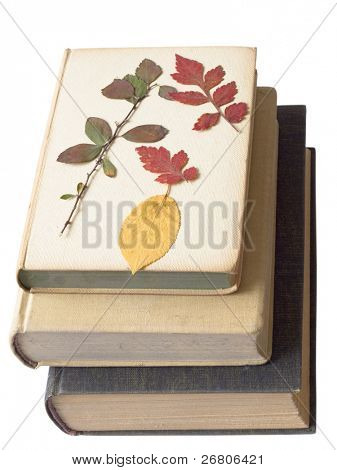 old books with autumn leaves