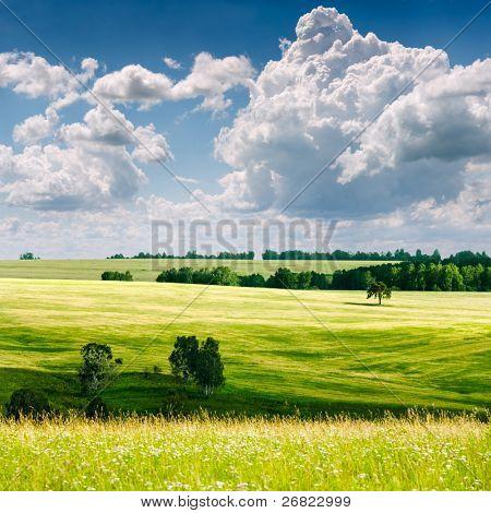 schöne Sommerlandschaft
