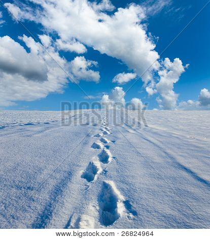 Traces on a snow