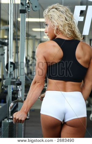 2683490 ... Muscle Girls Mature Female Muscle Armwrestling Women Bodybuilding ...