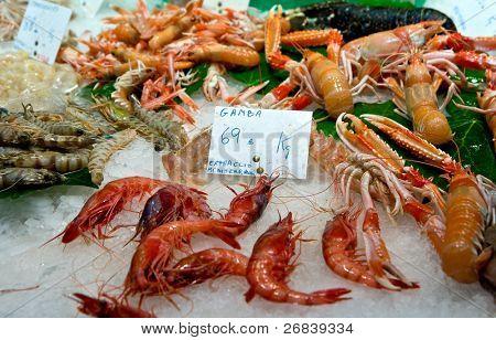 Shrimps cooled on ice on food market