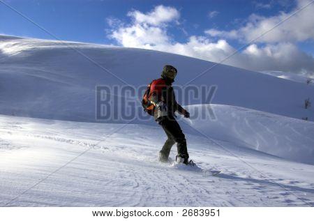 Snowbording Free Cross-Country