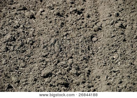 Background from ploughed earth in the field
