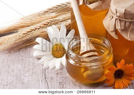 honey, flowers, spike isolated on table