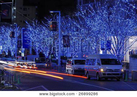 Holiday Illumination