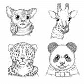 Fashion Animals. Hand Drawn Hipster Porterts In Various Funny Clothes Vector Animals Picture For Adu poster