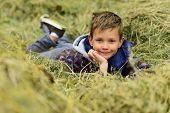 Small Dreamer. Small Boy Relax In Haystack. Small Boy Daydreaming In Haystack Hill. Looking For A Ne poster