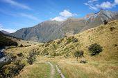 New Zealand Mountains - Beautiful Hiking Trail Of Mount Aspiring National Park. poster