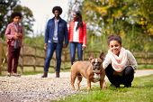 Mixed race girl squatting to pet her dog during a family walk in the countryside looking to camera,  poster