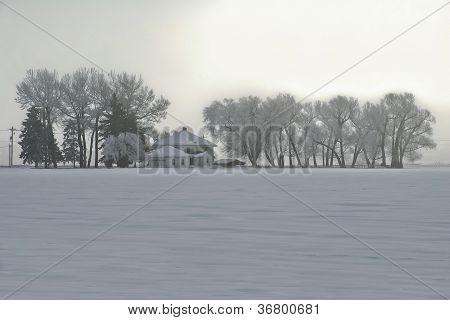 Winter's Mantle