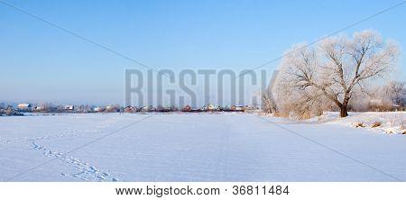 Beautiful Winter Landscape. Panorama.