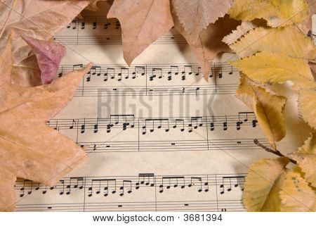 Old Music And Leaves