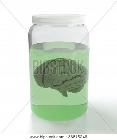 Brain In Jar With Liquid