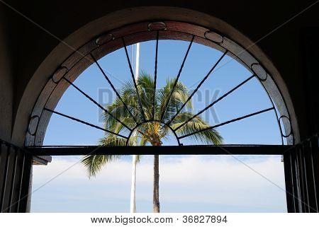 Arch Palm